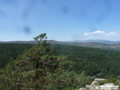 Sestil de Maillo-Mojonavalle-Canencia; rutas por los arribes del duero senderismo sierra de cazorla